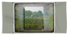 Beach Towel featuring the photograph Montinore Winery by Jeffrey Jensen