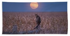 Moon Kitty  Beach Towel
