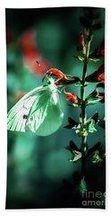 Moonlight Butterfly Beach Sheet