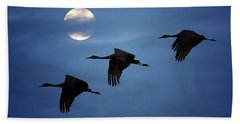 Beach Towel featuring the photograph Moonlit Flight by Susan Rissi Tregoning