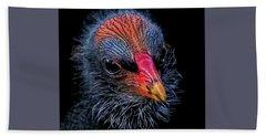 Moorhen Chick Beach Sheet