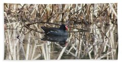 Moorhen Beach Towels