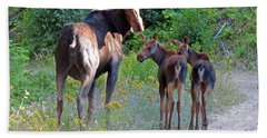 Moose Mom And Babies Beach Towel by Cindy Murphy - NightVisions