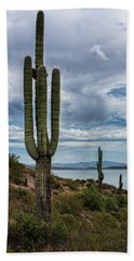 Beach Towel featuring the photograph More Beauty Of The Southwest  by Saija Lehtonen