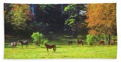 Morgan Horses In Autumn Pasture Beach Sheet