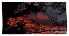 Morning Cold II Beach Towel by Angela J Wright