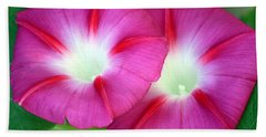 Beach Sheet featuring the photograph Morning Glories by Sheila Brown