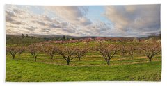 Morning Glory Orchards Beach Towel