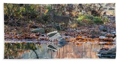 Morning In The Woods Beach Towel