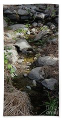 Morning Light At Strawberry Creek Beach Towel by Suzanne Oesterling