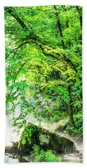 Morning Light In The Forest Beach Towel