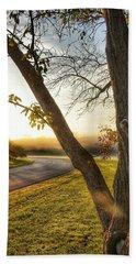 Beach Towel featuring the photograph Morning Light by Nikki McInnes