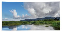 Morning Reflections On A Marsh Pond Beach Towel by Greg Nyquist