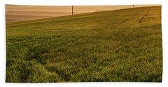 Beach Towel featuring the photograph Morning Sun. Moravian Tuscany by Jenny Rainbow