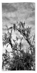 Moss Tree II Beach Towel