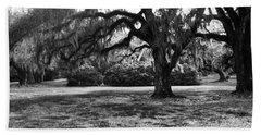 Moss Trees Black And White Beach Sheet