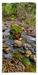 Beach Towel featuring the photograph Mossy Boulder by Christopher Holmes