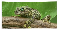 Beach Towel featuring the photograph Mossy Frog by Nikolyn McDonald