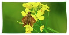 Moth On Mustard Flower Beach Towel