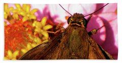 Moth On Pink And Yellow Flowers Beach Towel