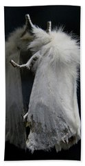 Moth Reflection Beach Towel