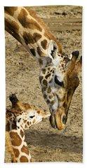 Mother Giraffe With Her Baby Beach Towel