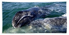 Mother Grey Whale And Baby Calf Beach Sheet