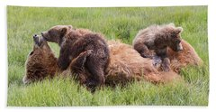 Mother Grizzly Suckling Twin Cubs Beach Towel