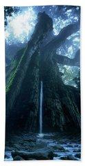 Mother Tree Beach Sheet by Tatsuya Atarashi
