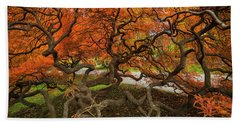 Mount Auburn Cemetery Beautiful Japanese Maple Tree Orange Autumn Colors Branches Beach Towel