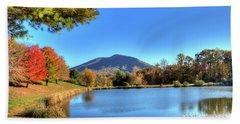 Mount Jefferson Reflection Beach Towel by Dale R Carlson