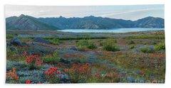 Mount St Helens Spirit Lake Fields Of Spring Wildflowers Beach Towel by Mike Reid