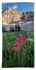 Mount Timpanogos Wildflowers Beach Sheet