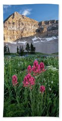 Mount Timpanogos Wildflowers Beach Towel