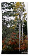 Mountain Autumn Beach Towel