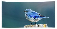 Mountain Bluebird 2 Beach Towel