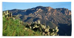 Mountain Cactus View - Santa Monica Mountains Beach Towel
