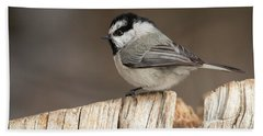 Mountain Chickadee Beach Sheet