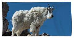 Beach Sheet featuring the photograph Mountain Goat 2 by Gary Lengyel