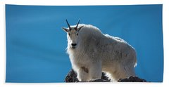Beach Towel featuring the photograph Mountain Goat 3 by Gary Lengyel