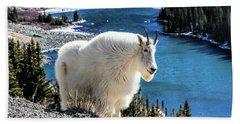 Mountain Goat At Lower Blue Lake Beach Sheet