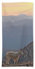 Beach Towel featuring the photograph Mountain Goat Sunset by Scott Mahon