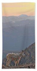 Beach Sheet featuring the photograph Mountain Goat Sunset by Scott Mahon