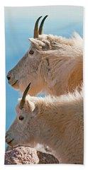 Beach Sheet featuring the photograph Mountain Goats by Gary Lengyel