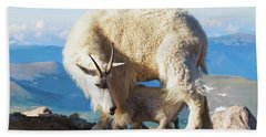 Mountain Goats Nanny And Kid Beach Sheet