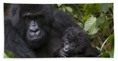 Mountain Gorilla Mother Holding 3 Month Beach Towel by Suzi Eszterhas