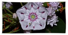 Mountain Laurel 005 Beach Towel