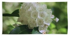 Beach Towel featuring the photograph Mountain Laurel - Spring by Nikolyn McDonald