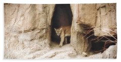 Mountain Lion - Light Beach Towel