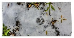 Mountain Lion Tracks In Snow Beach Towel